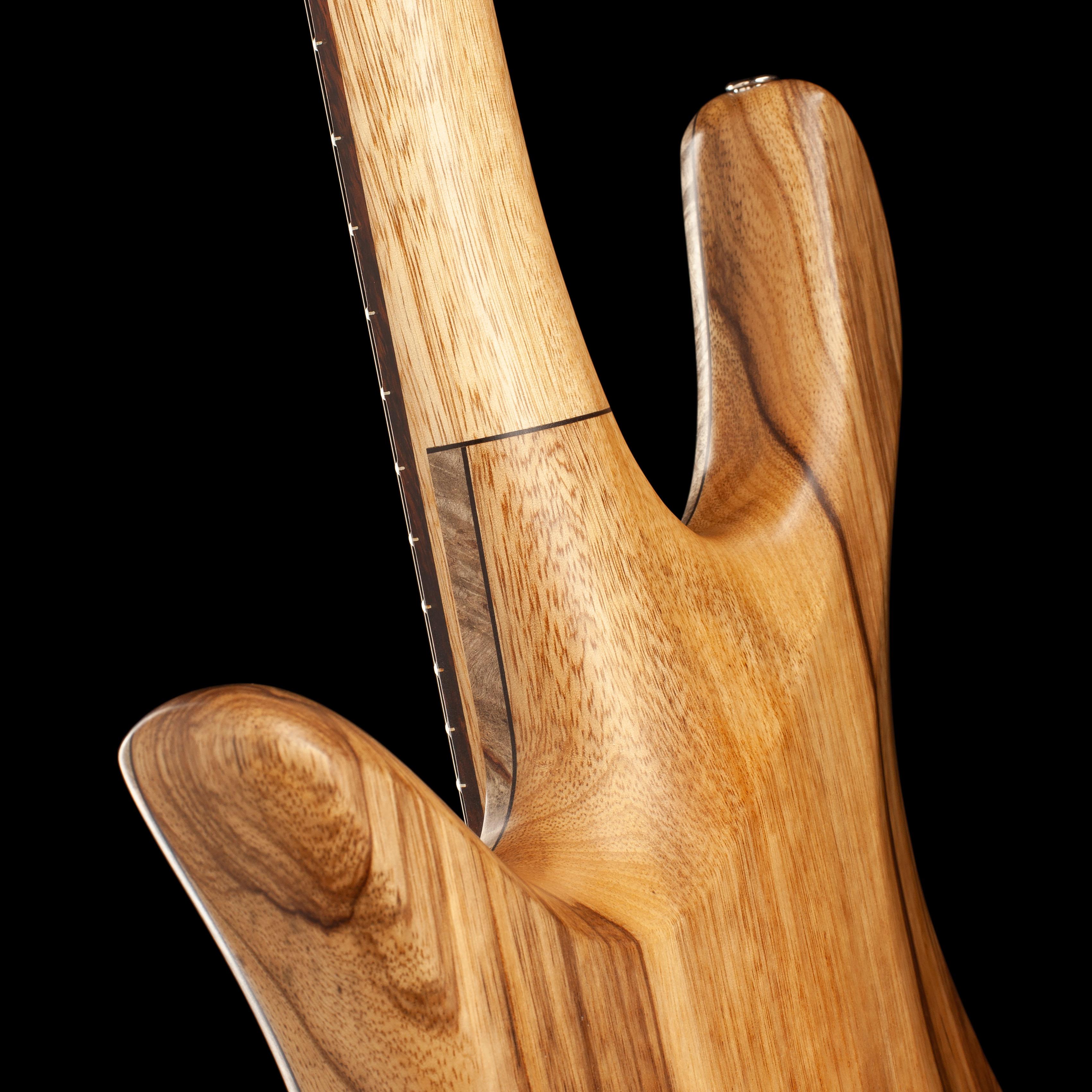 Bass Guitar Cutaway Closeup
