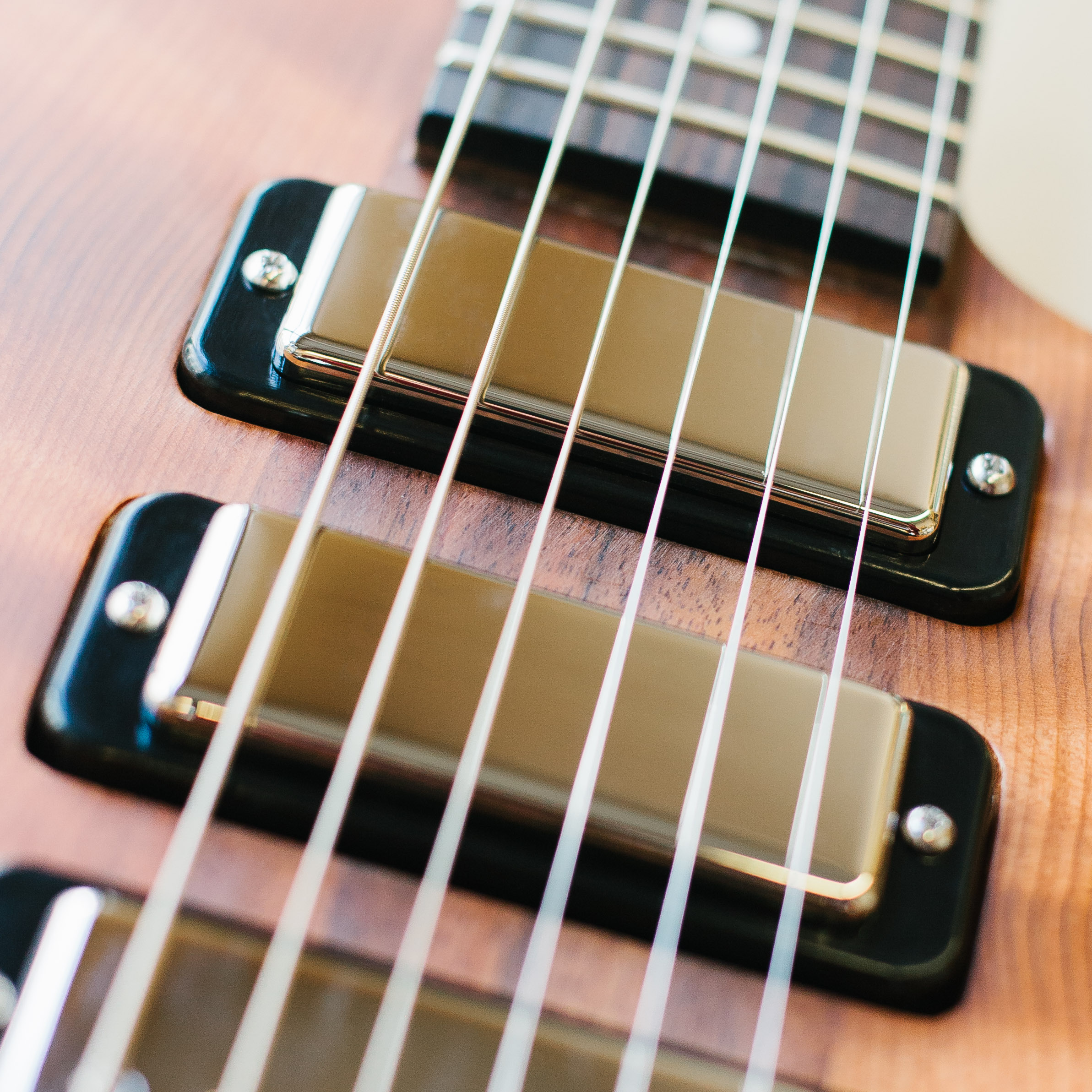 Bass Guitar Pickups