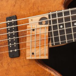 Fodera Bass Pickups and Bridge