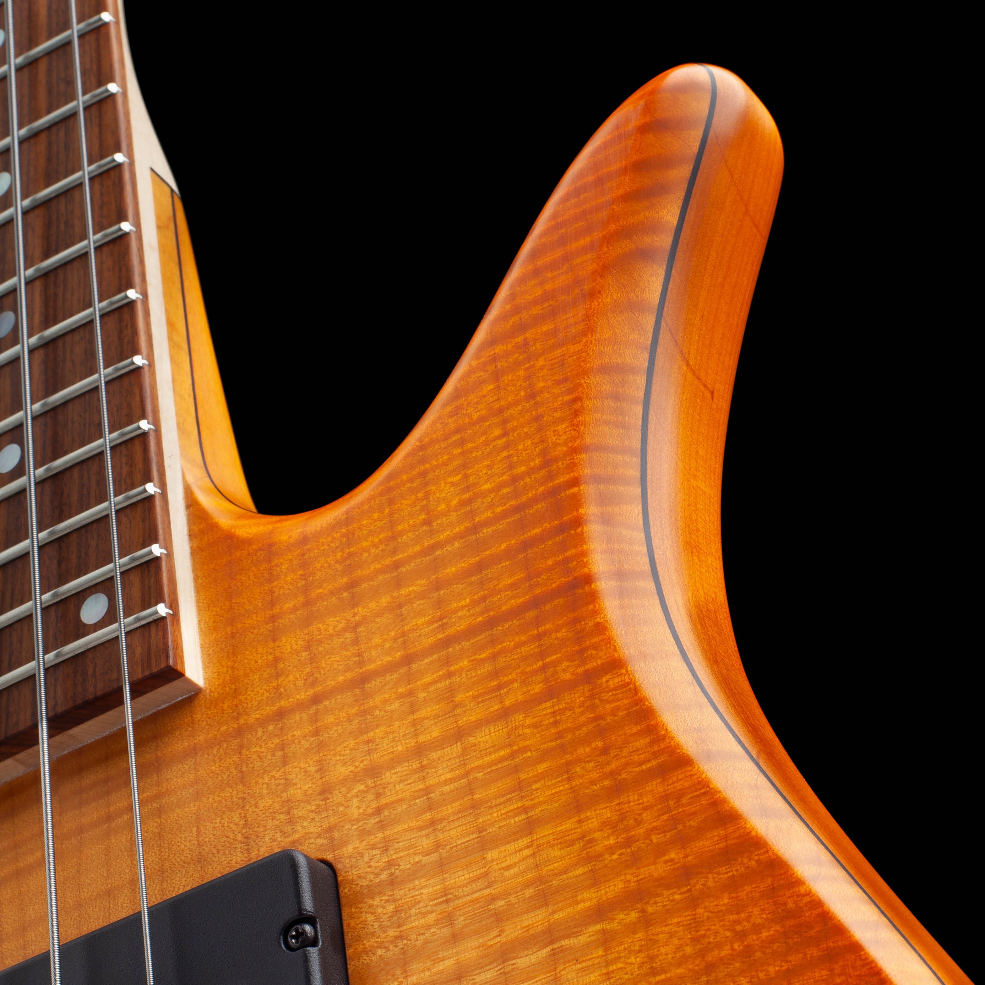 Bass Guitar Body Curves Closeup