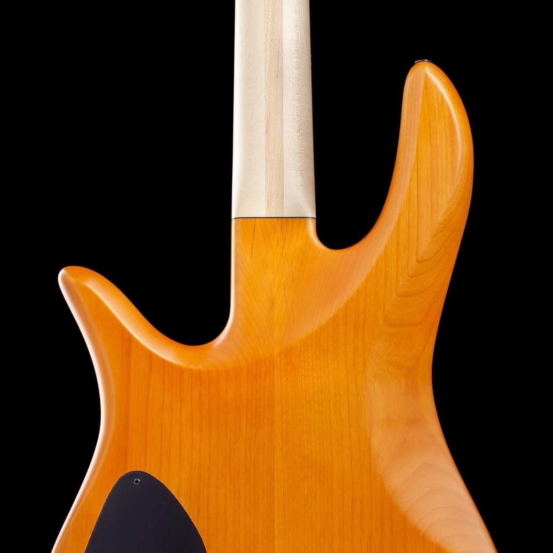 Bass Guitar Body Rear