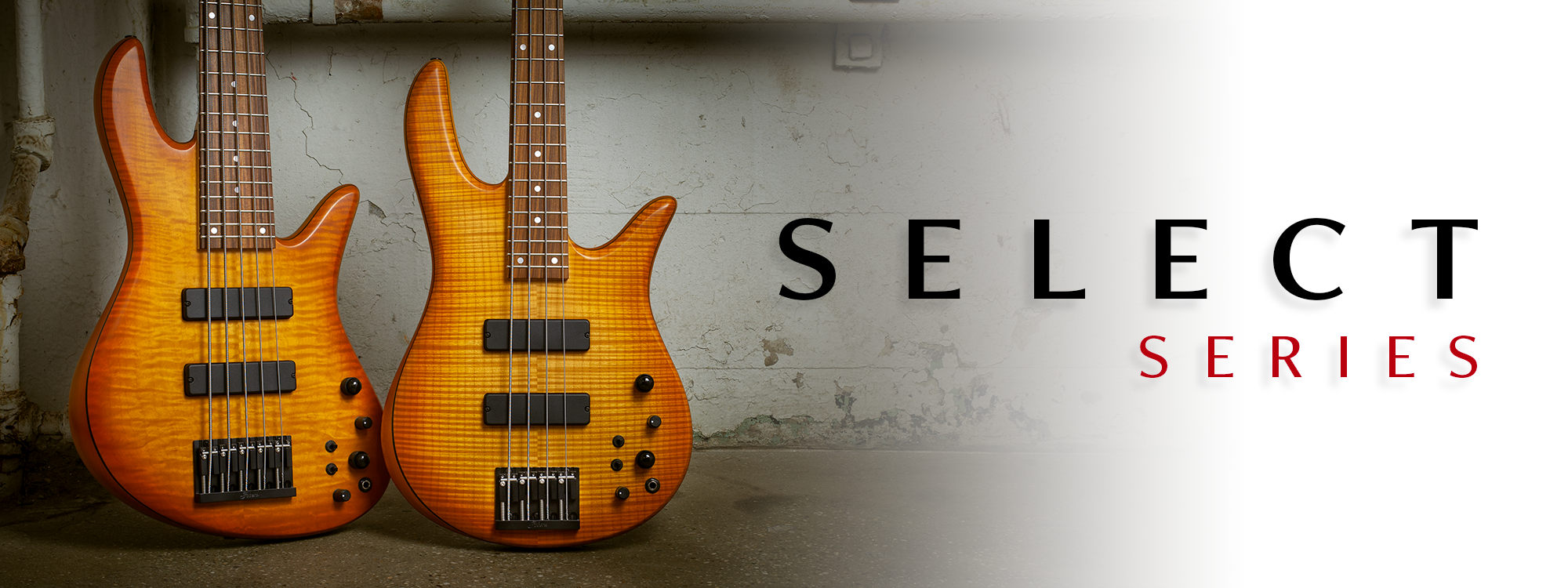 Select Series Basses Banner