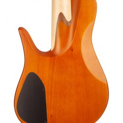 Custom Bass With Warm Colored Topwood Body Rear