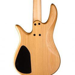 Bass Guitar Back Detail