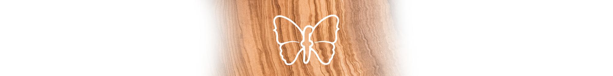 Fodera Logo Banner