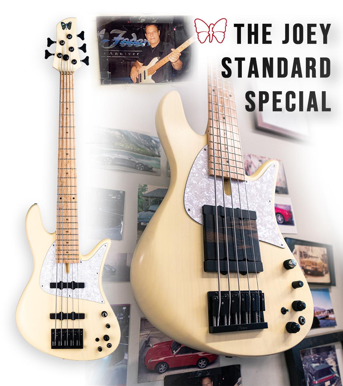5-String Joey Standard Special Banner