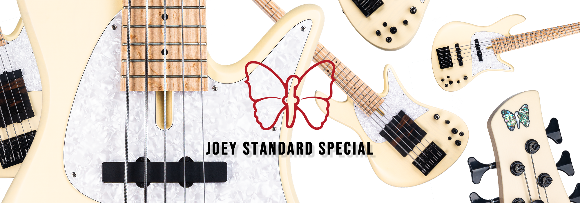 Joey Standard Special 5-String Guitar Banner
