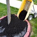 lawn care services Olathe