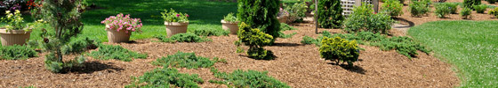 landscaping services Olathe