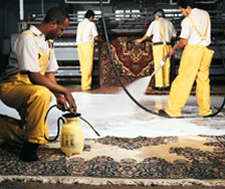 Rug Washing | Fred Remmers Rug Cleaners