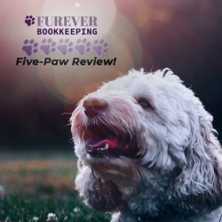 Furever Bookkeeping in Maryland receives great review