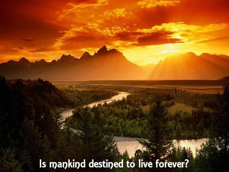 living-forever-839