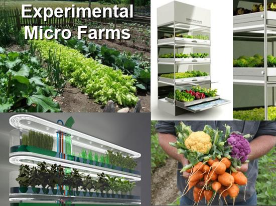 Micro-Agronomy-672