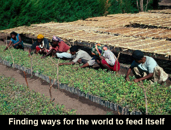 food-systems-africa-679