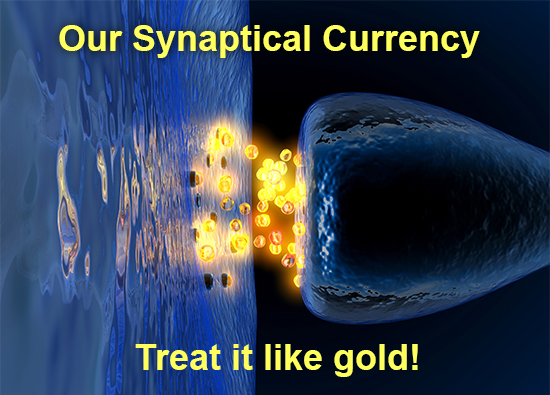 Synaptical-Currency-1