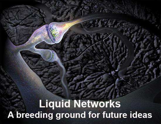 Liquid-Networks-1