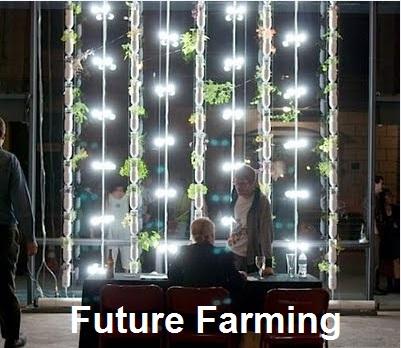 Future-Farming-483s