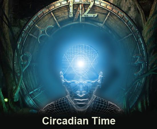 Circadian-Time-546