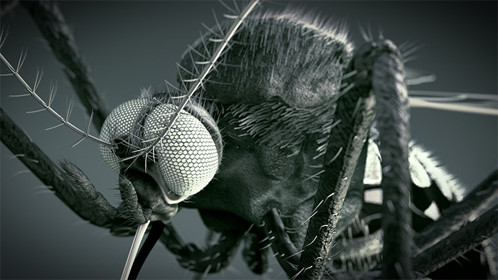 Will our future insects have parasitic nano-scouts living on their exteriors?