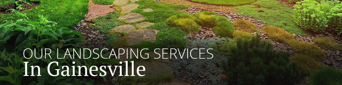 Gainsville Landscaping