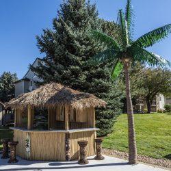 A tiki hut bar and palm tree at Gateway Place Apartments