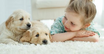 kids with puppies on carpet