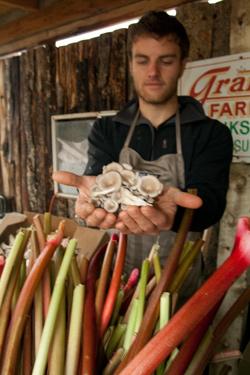 mushrooms-rhubarb