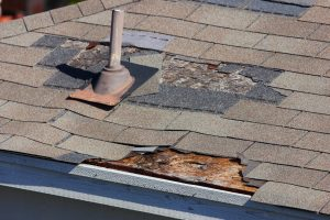 home damage adjusters