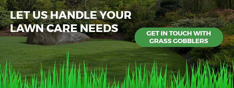 Call to action for getting professional help with lawn care needs.