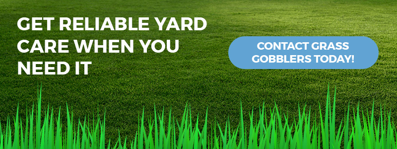 Call to action for reliable lawn care.