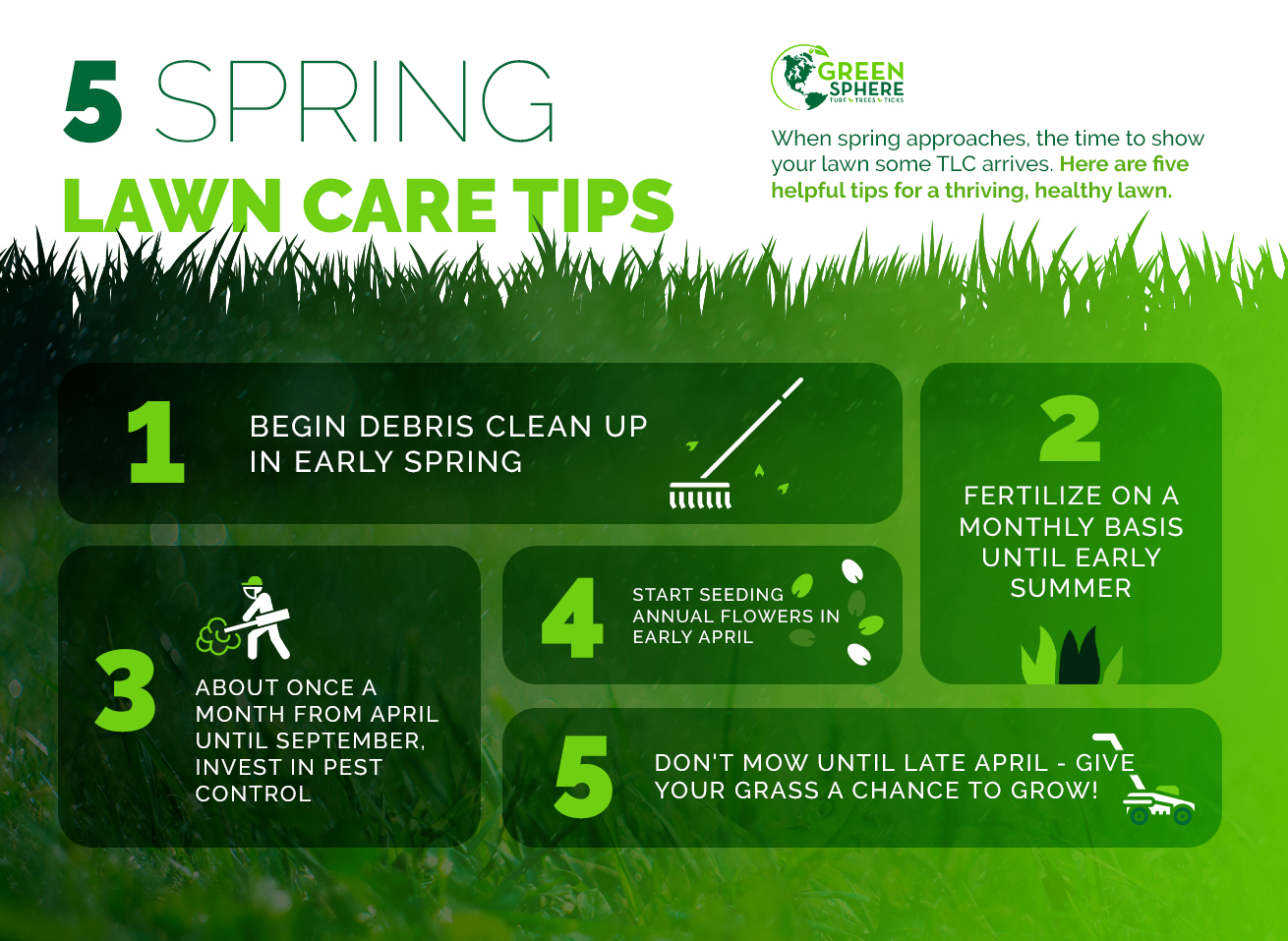 Spring Lawn Care Tips Grow Your Lawn Swazy Alexander Landscaping