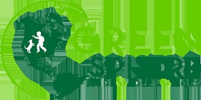Green Sphere Logo