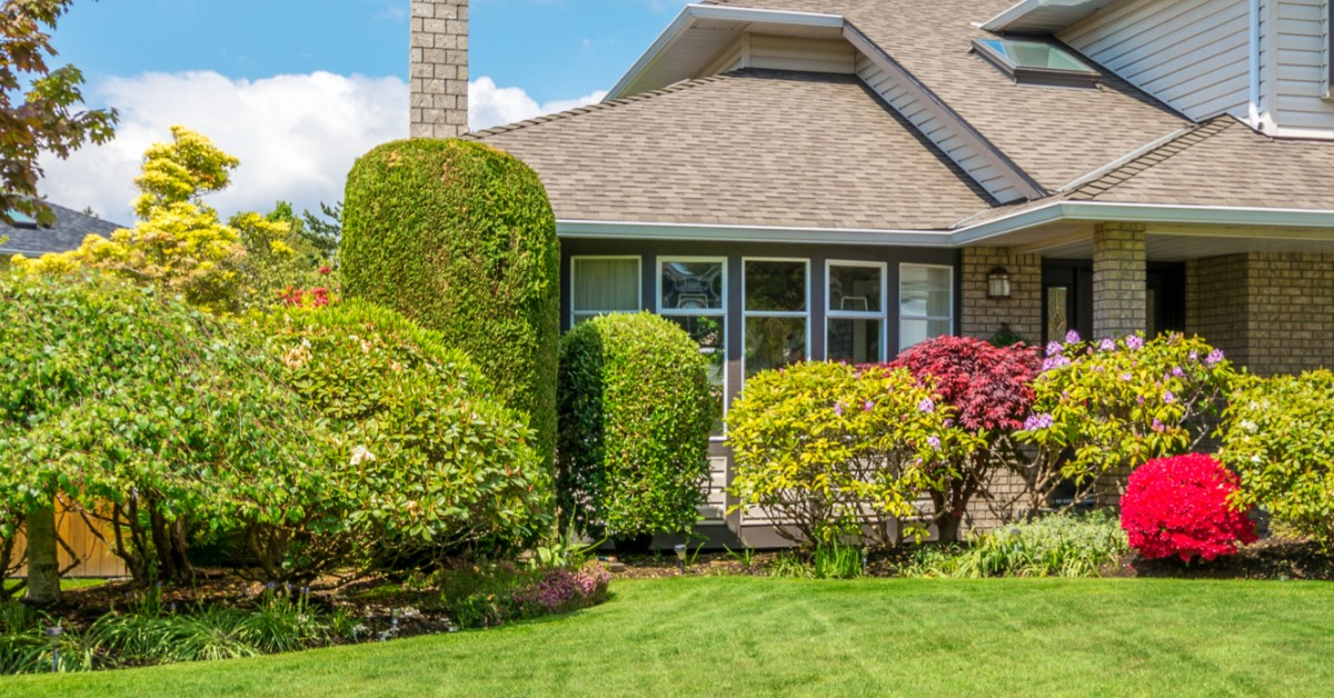 Picture of home with manicured bushes out front