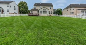 House with green lawn