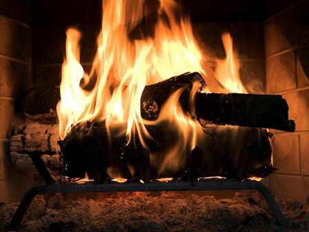 The Best Firewood Choices For A Roaring Fire This Winter Tis The