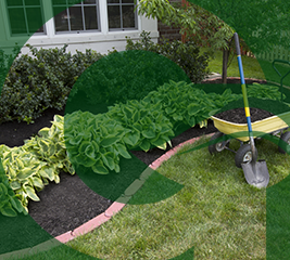 Landscaping services local landscaping companies green garden lawn care workwithnaturefo