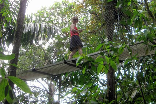 Hanging Bridge Tours Costa Rica - Group & Family Vacation