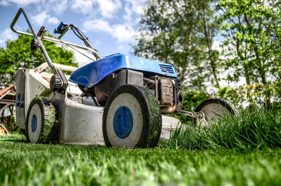 Lawn Care Companies in Allentown | How to mow your lawn like