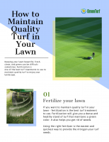 Lawn Care Companies