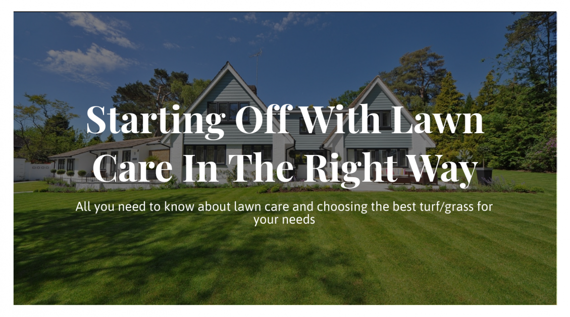 Starting Off With Lawn Care In The Right Way