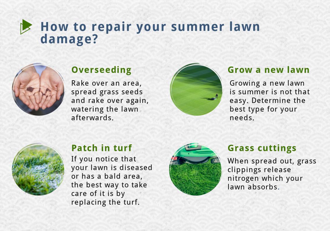 repair lawn damage summer