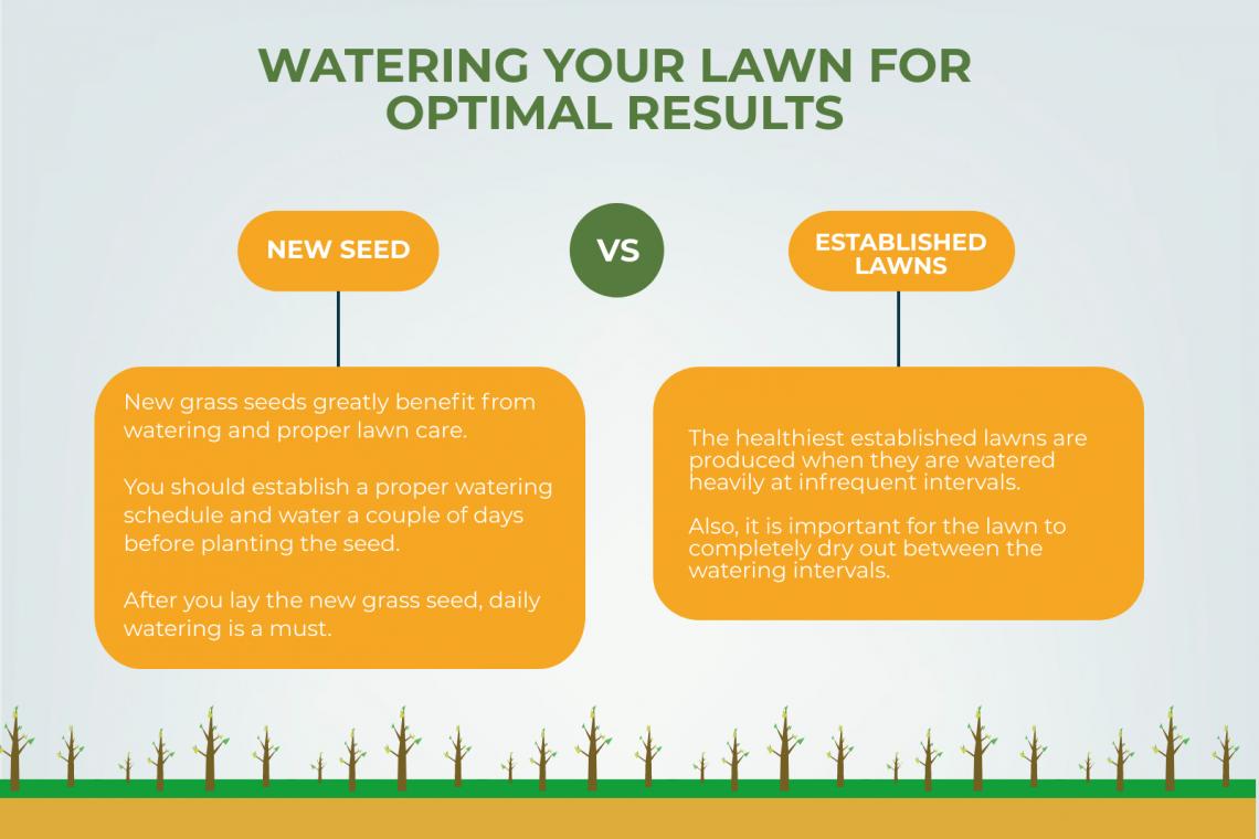 watering lawn best results