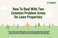 problem areas lawn