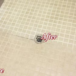 Grout Cleaning in Shower, Before and After