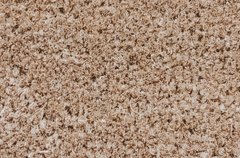 Tan Carpet Closeup