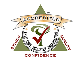 Tree Care Industry Association Accreditation