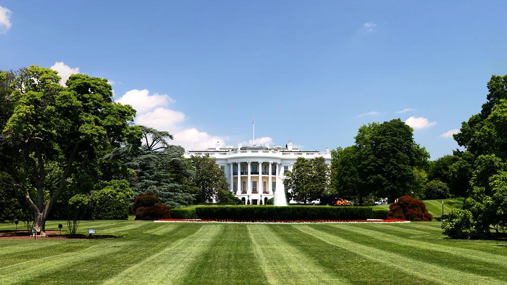white-house-lawn-1000