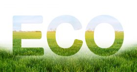 """The word """"eco"""" with a forest and sunshine in the background."""
