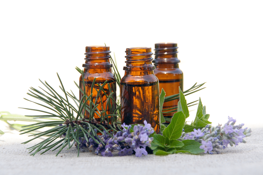 Essential Oil Remedies for Lice