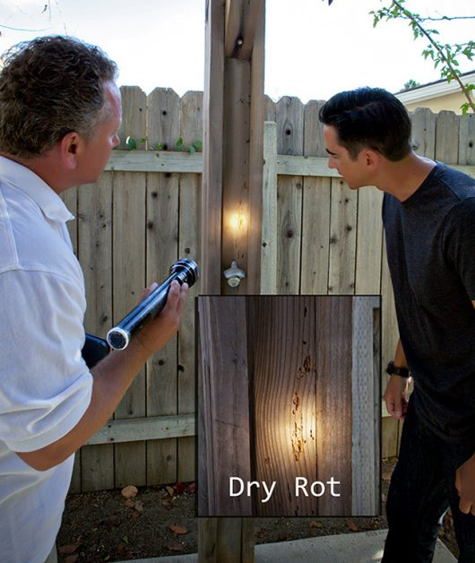 Stop dryrot damage with termite extermination!